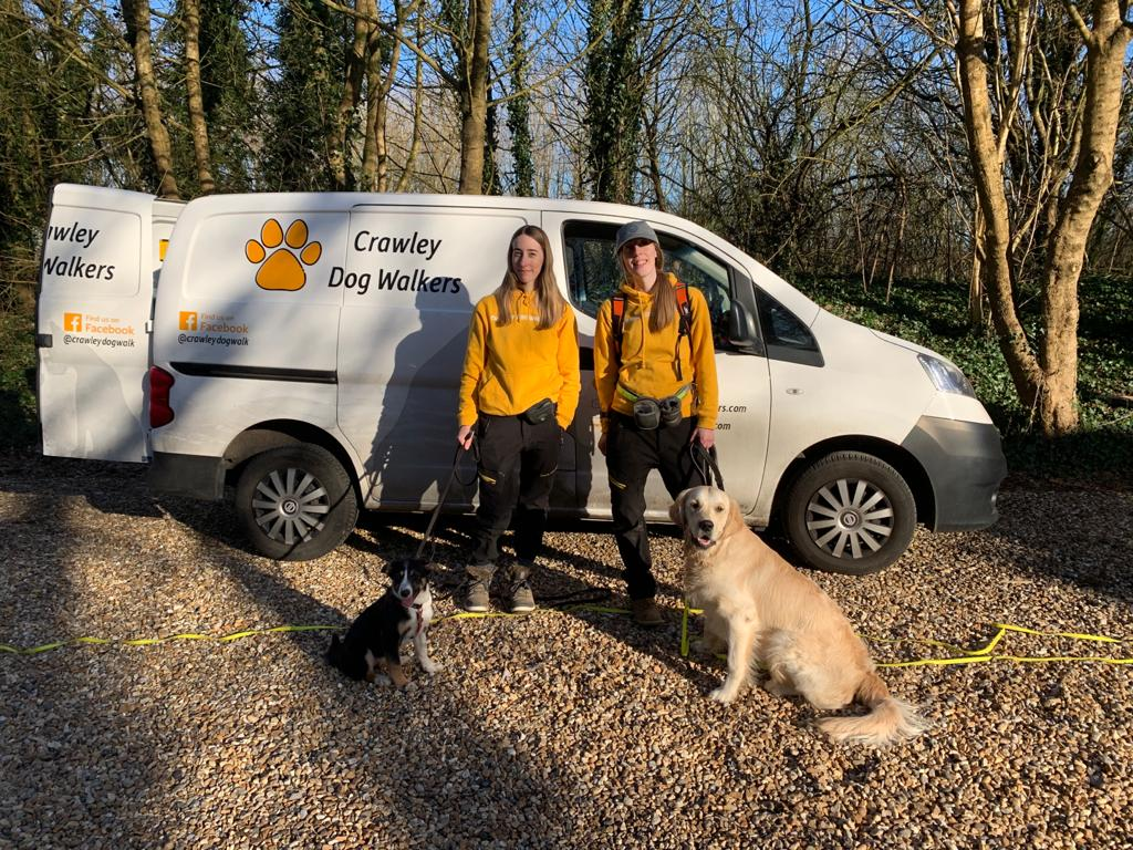 CRAWLEY DOG WALKERS - WHY CHOOSE US? SERVICES & OFFERS!